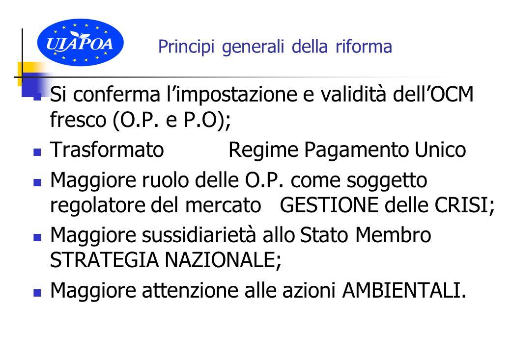 DISPOSIZIONI TRANSITORIE Le O.P.e A.O.P.
