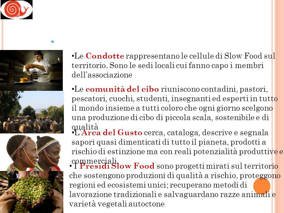 La rete di Terra Madre 2000 comunità del cibo 1000 cuochi 400 accademici e ricercatori 1000 studenti e giovani produttori che vogliono difendere l'agricoltura, la pesca e l'allevamento sostenibili, per preservare il gusto e la biodiversità del cibo in 160 Paesi