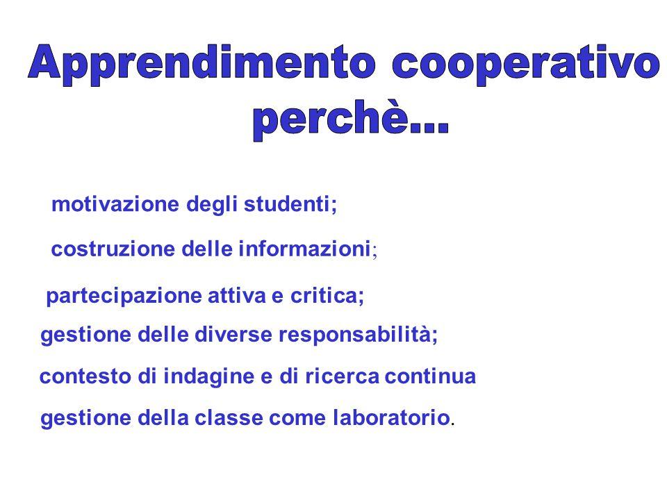 motivazione degli studenti; costruzione delle informazioni ; partecipazione attiva e critica; gestione delle diverse responsabilità; contesto di indag