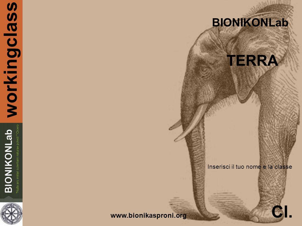 workingclass BIONIKONLab TERRA www.bionikasproni.org Cl. Inserisci il tuo nome e la classe