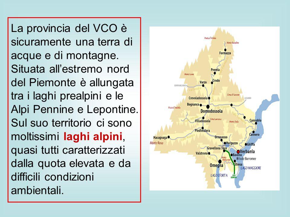 La provincia del VCO è sicuramente una terra di acque e di montagne. Situata all'estremo nord del Piemonte è allungata tra i laghi prealpini e le Alpi