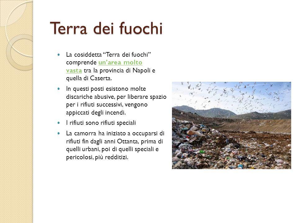 """Terra dei fuochi La cosiddetta """"Terra dei fuochi"""" comprende un'area molto vasta tra la provincia di Napoli e quella di Caserta.un'area molto vasta In"""