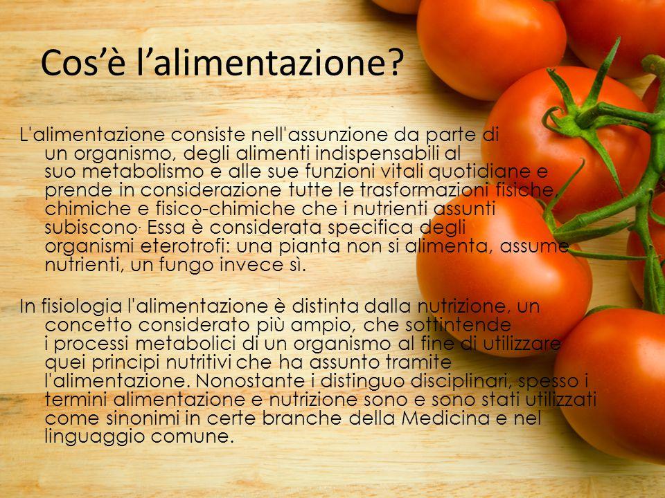 Cos'è l'alimentazione? L'alimentazione consiste nell'assunzione da parte di un organismo, degli alimenti indispensabili al suo metabolismo e alle sue