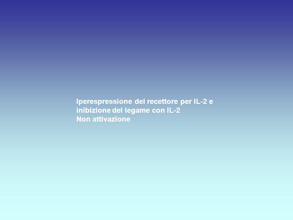 Iperespressione del recettore per IL-2 e inibizione del legame con IL-2 Non attivazione