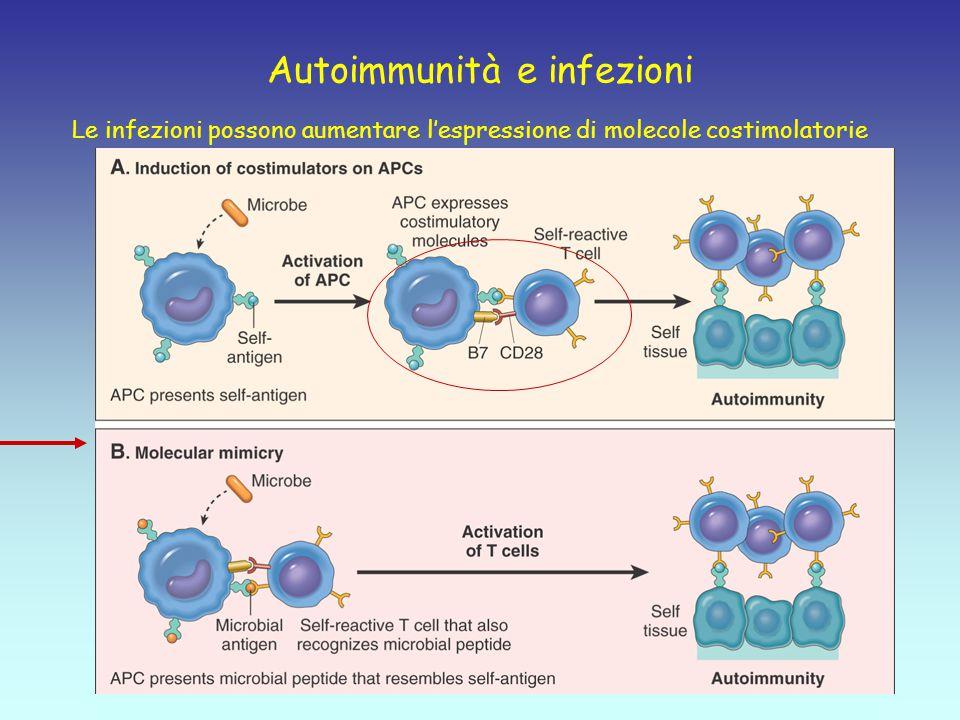 Autoimmunità e infezioni Le infezioni possono aumentare l'espressione di molecole costimolatorie