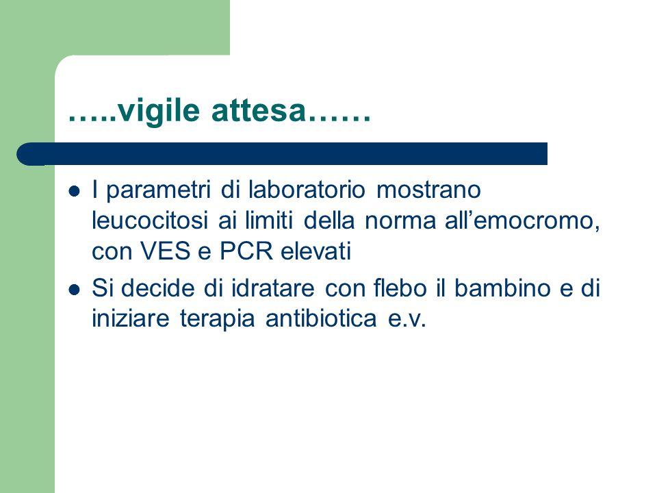 …..vigile attesa…… I parametri di laboratorio mostrano leucocitosi ai limiti della norma all'emocromo, con VES e PCR elevati Si decide di idratare con flebo il bambino e di iniziare terapia antibiotica e.v.