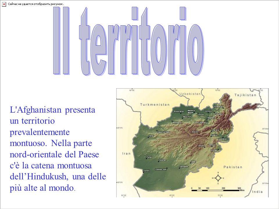L'Afghanistan presenta un territorio prevalentemente montuoso. Nella parte nord-orientale del Paese c'è la catena montuosa dell'Hindukush, una delle p