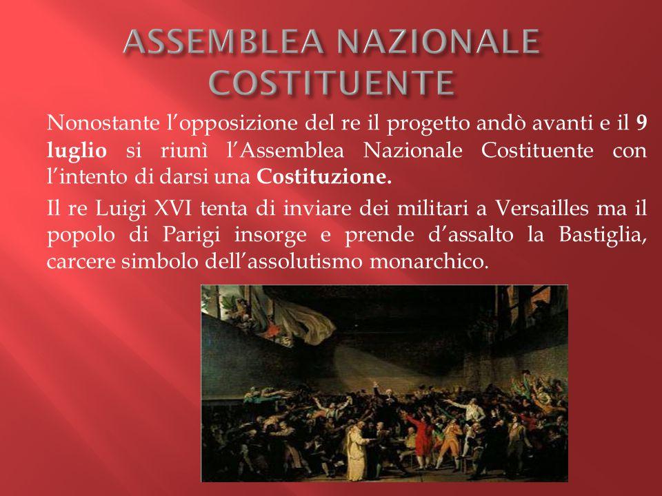 Nonostante l'opposizione del re il progetto andò avanti e il 9 luglio si riunì l'Assemblea Nazionale Costituente con l'intento di darsi una Costituzio