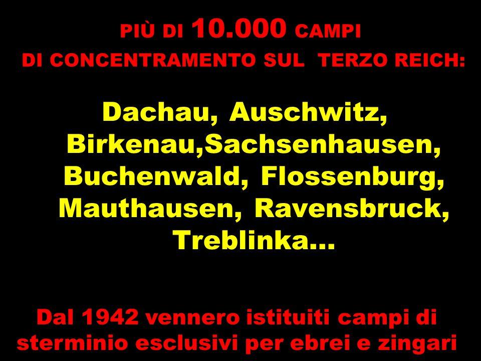 Dachau, Auschwitz, Birkenau,Sachsenhausen, Buchenwald, Flossenburg, Mauthausen, Ravensbruck, Treblinka... PIÙ DI 10.000 CAMPI DI CONCENTRAMENTO SUL TE