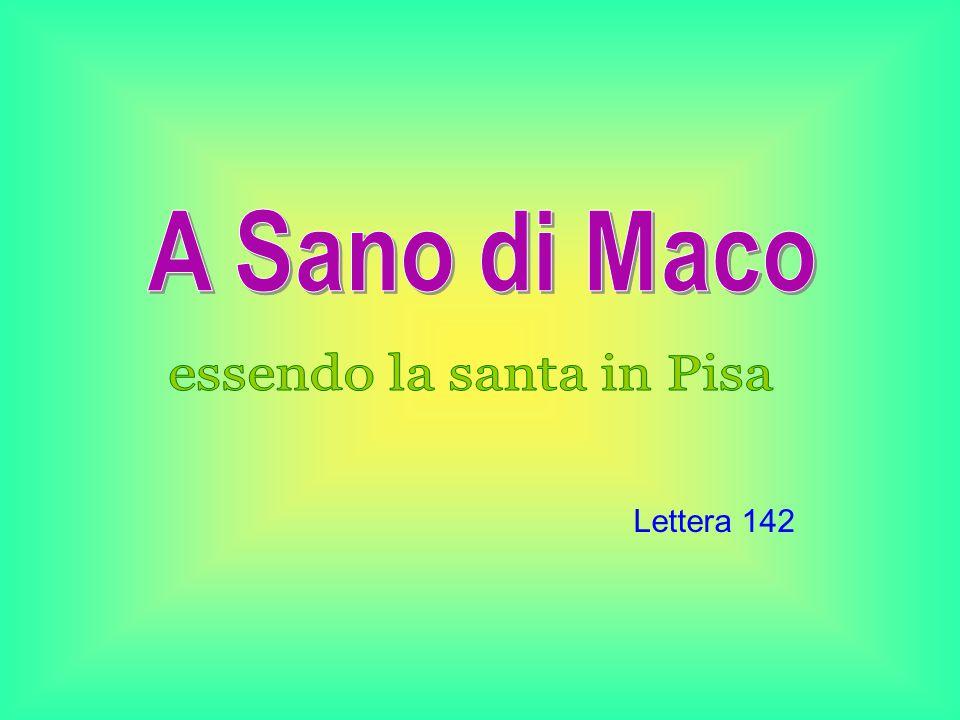 Lettera 142