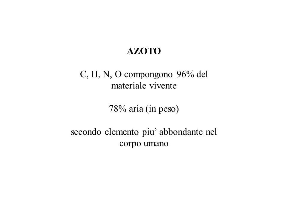 AZOTO C, H, N, O compongono 96% del materiale vivente 78% aria (in peso) secondo elemento piu' abbondante nel corpo umano