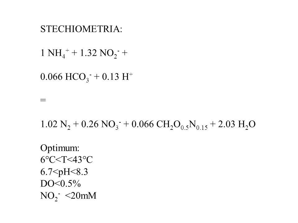 STECHIOMETRIA: 1 NH 4 + + 1.32 NO 2 - + 0.066 HCO 3 - + 0.13 H + = 1.02 N 2 + 0.26 NO 3 - + 0.066 CH 2 O 0.5 N 0.15 + 2.03 H 2 O Optimum: 6°C<T<43°C 6