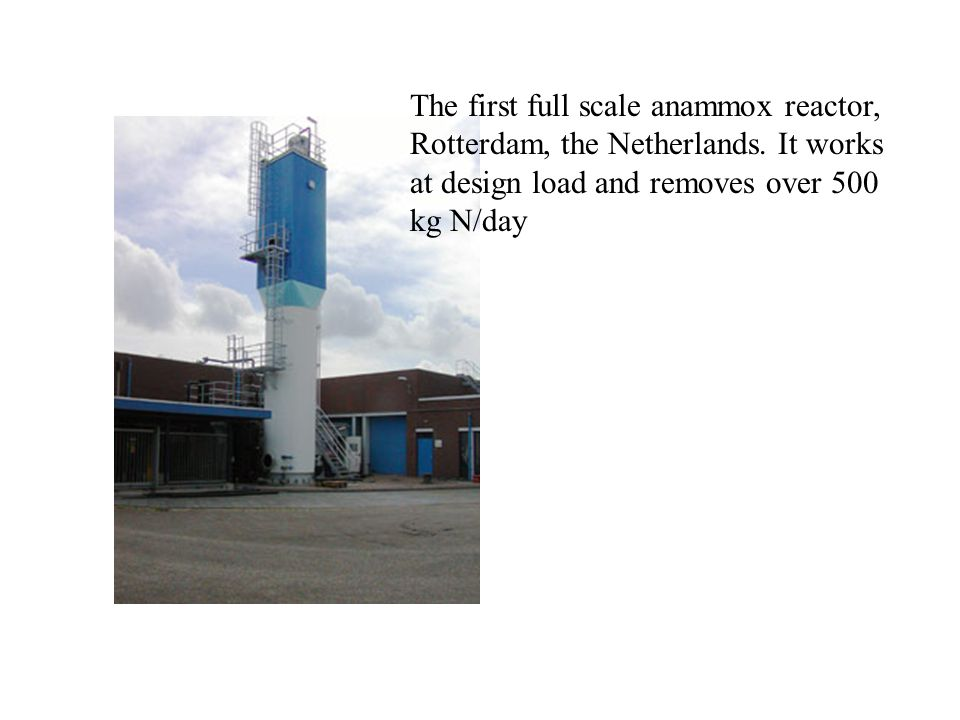 The first full scale anammox reactor, Rotterdam, the Netherlands. It works at design load and removes over 500 kg N/day