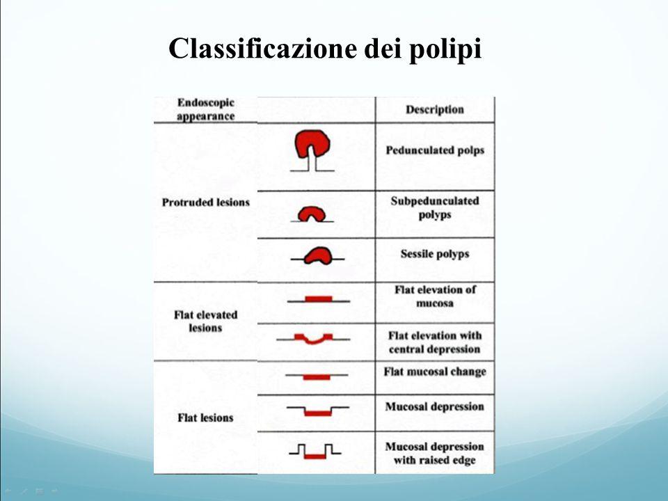 Classificazione dei polipi