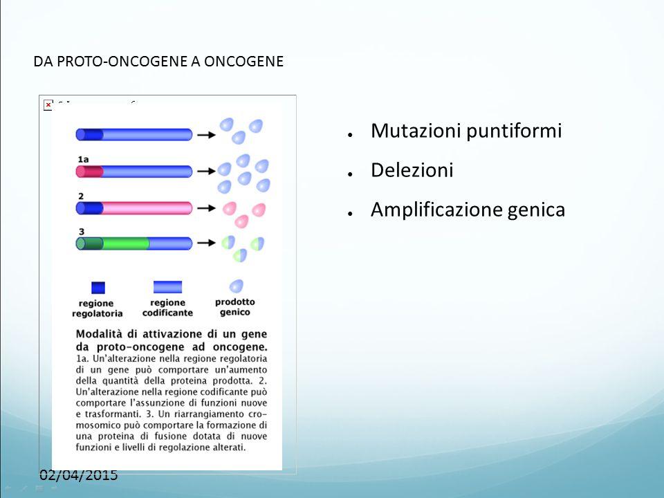 02/04/2015 DA PROTO-ONCOGENE A ONCOGENE ● Mutazioni puntiformi ● Delezioni ● Amplificazione genica