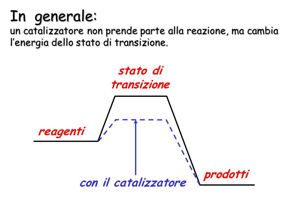 L'azione del catalizzatore può essere illustrata in un diagramma di energia potenziale dove è possibile evidenziare l'abbassamento dell'energia di att