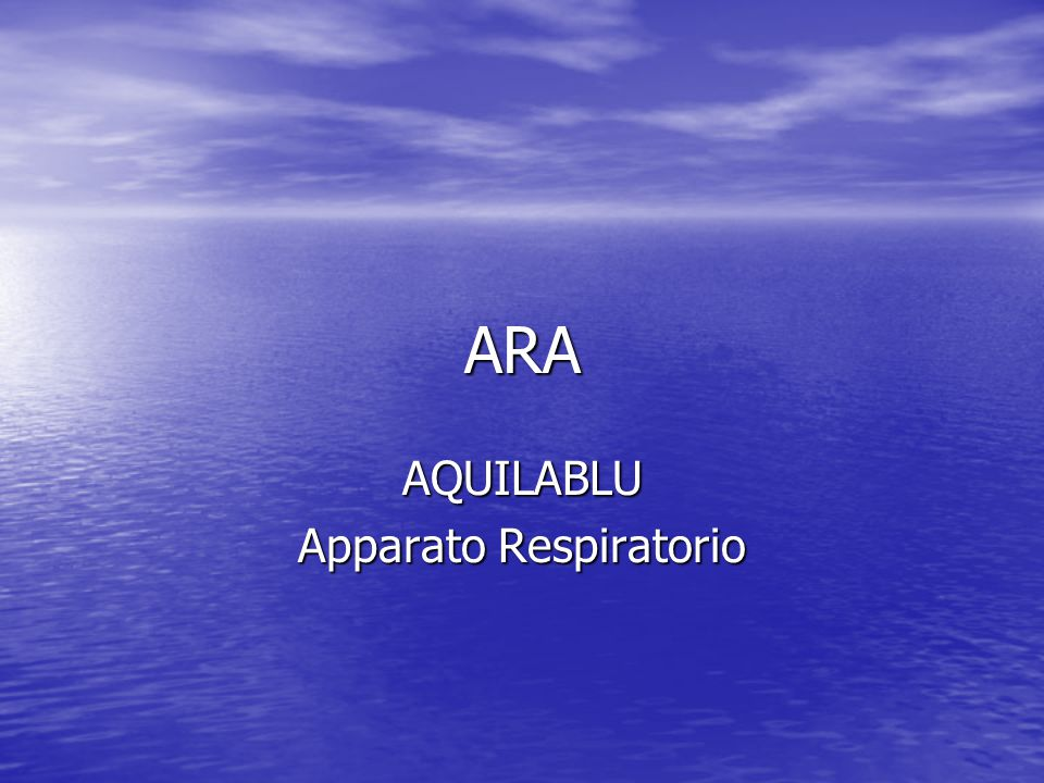 ARA AQUILABLU Apparato Respiratorio