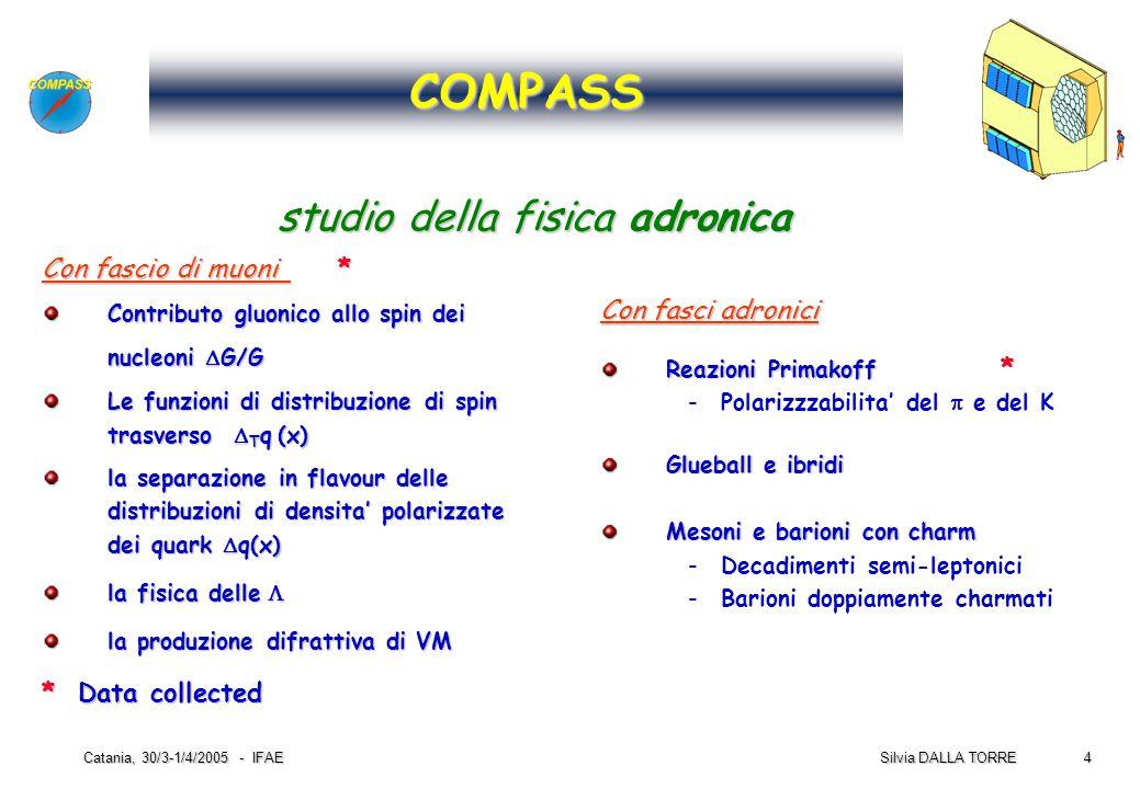 4 Silvia DALLA TORRE Catania, 30/3-1/4/2005 - IFAE Con fascio di muoni * Contributo gluonico allo spin dei nucleoni  G/G Le funzioni di distribuzione