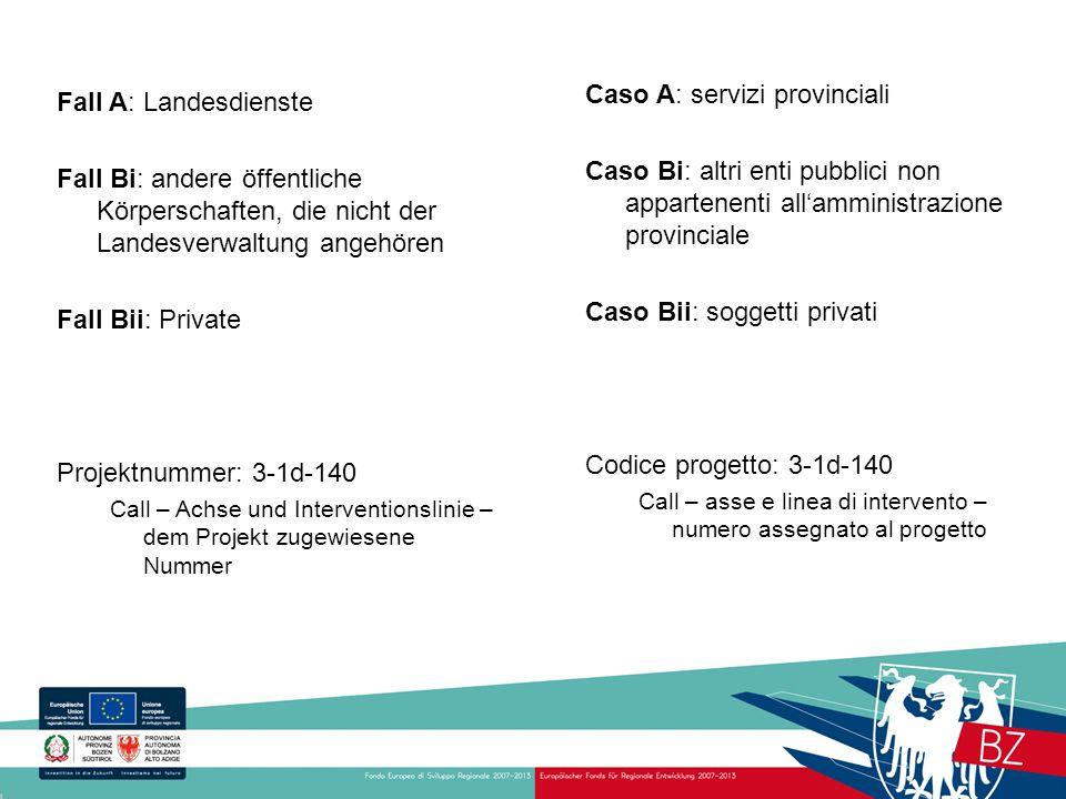 Caso A: servizi provinciali Caso Bi: altri enti pubblici non appartenenti all'amministrazione provinciale Caso Bii: soggetti privati Codice progetto:
