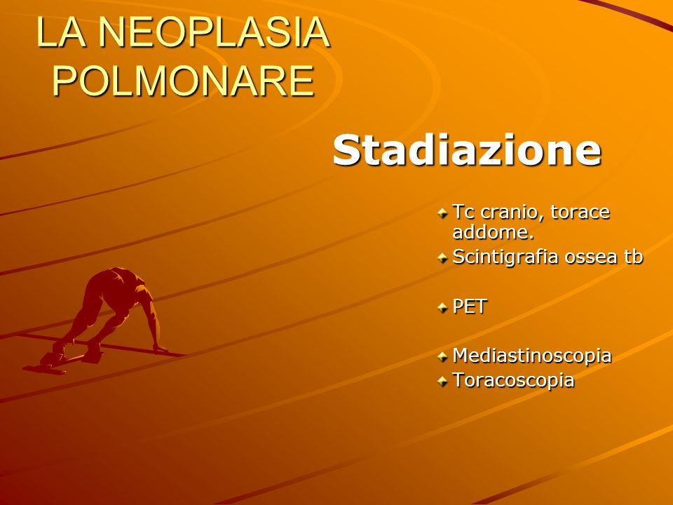 LA NEOPLASIA POLMONARE Stadiazione Stadiazione Tc cranio, torace addome. Scintigrafia ossea tb PETMediastinoscopiaToracoscopia