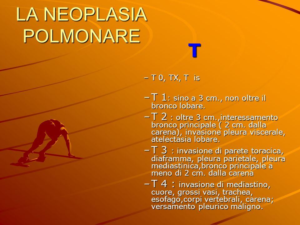 LA NEOPLASIA POLMONARE T –T 0, TX, T is –T 1 : sino a 3 cm., non oltre il bronco lobare. –T 2 : oltre 3 cm.,interessamento bronco principale ( 2 cm. d