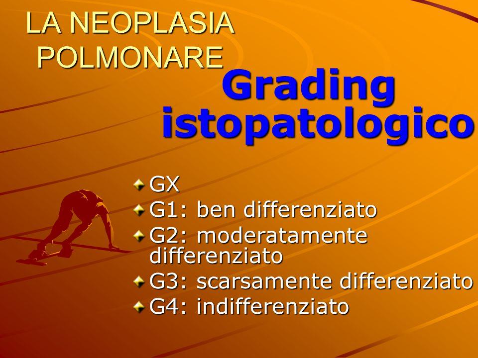 LA NEOPLASIA POLMONARE Grading istopatologico GX G1: ben differenziato G2: moderatamente differenziato G3: scarsamente differenziato G4: indifferenzia