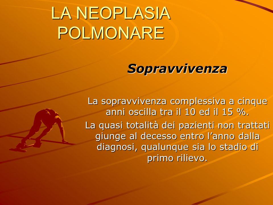 LA NEOPLASIA POLMONARE Sopravvivenza La sopravvivenza complessiva a cinque anni oscilla tra il 10 ed il 15 %. La quasi totalità dei pazienti non tratt