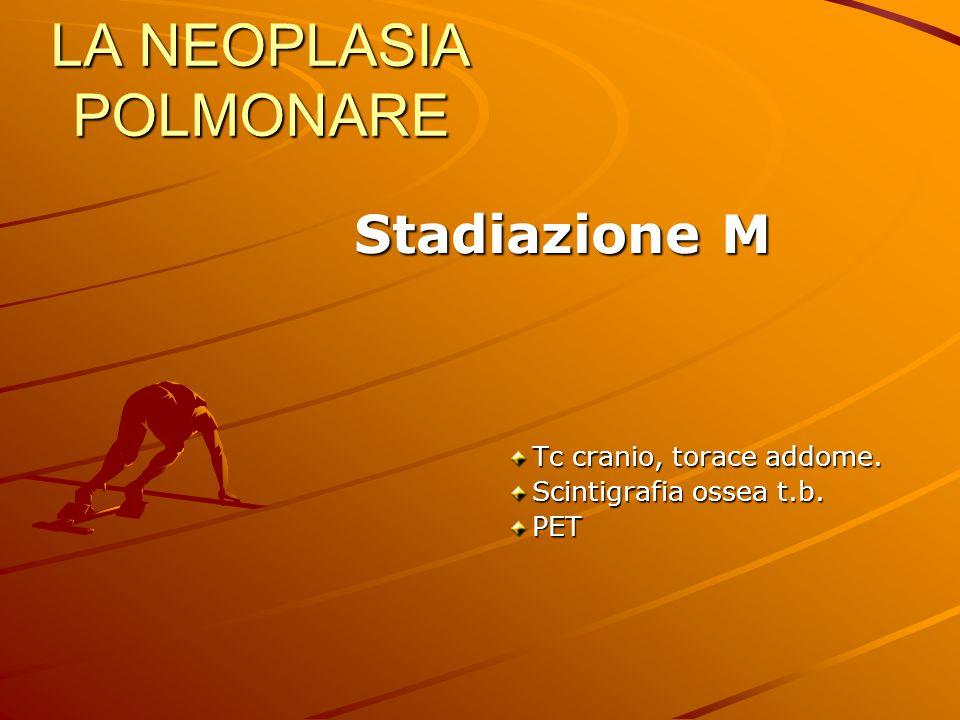 LA NEOPLASIA POLMONARE Stadiazione M Stadiazione M Tc cranio, torace addome. Scintigrafia ossea t.b. PET