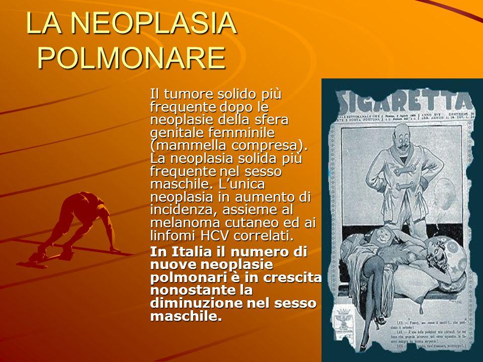 LA NEOPLASIA POLMONARE Il tumore solido più frequente dopo le neoplasie della sfera genitale femminile (mammella compresa). La neoplasia solida più fr