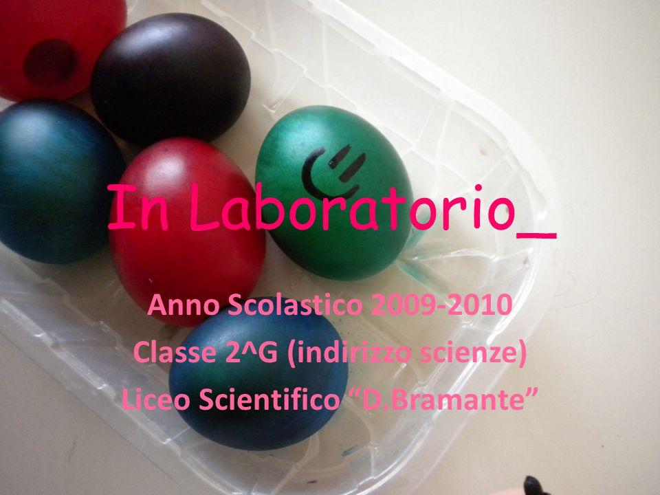"""In Laboratorio_ Anno Scolastico 2009-2010 Classe 2^G (indirizzo scienze) Liceo Scientifico """"D.Bramante"""""""