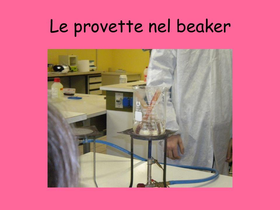 Le provette nel beaker