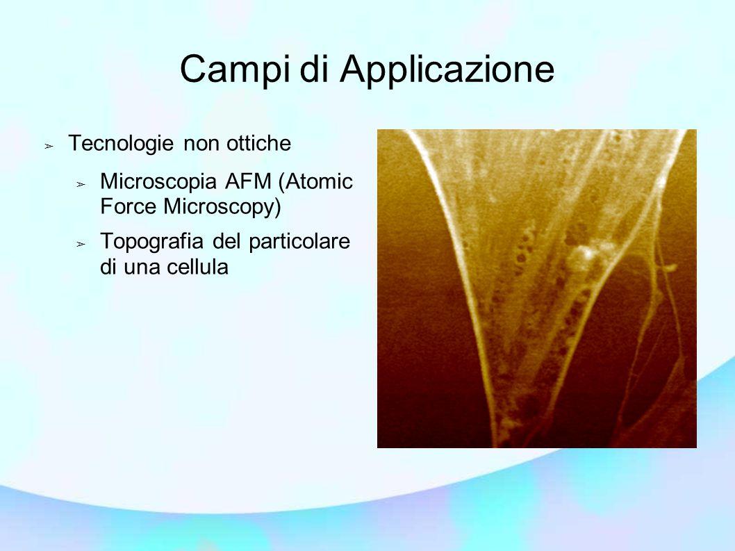 Campi di Applicazione ➢ Tecnologie non ottiche ➢ Microscopia AFM (Atomic Force Microscopy) ➢ Topografia del particolare di una cellula