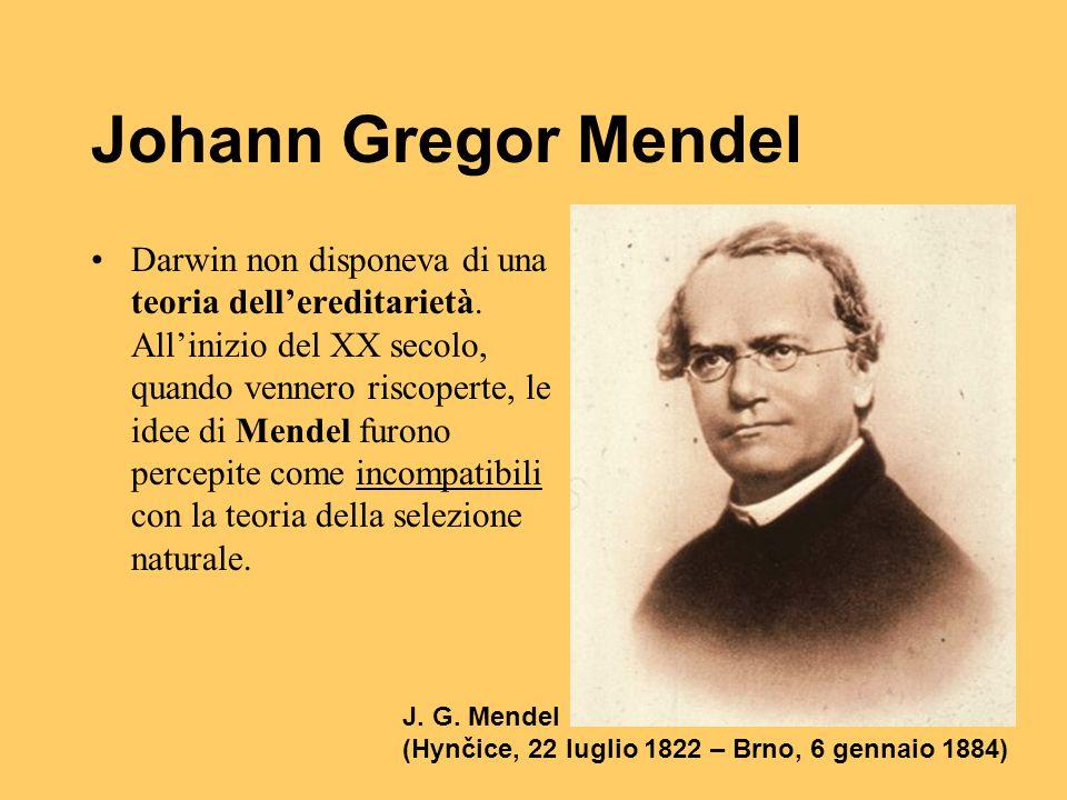 Johann Gregor Mendel Darwin non disponeva di una teoria dell'ereditarietà. All'inizio del XX secolo, quando vennero riscoperte, le idee di Mendel furo
