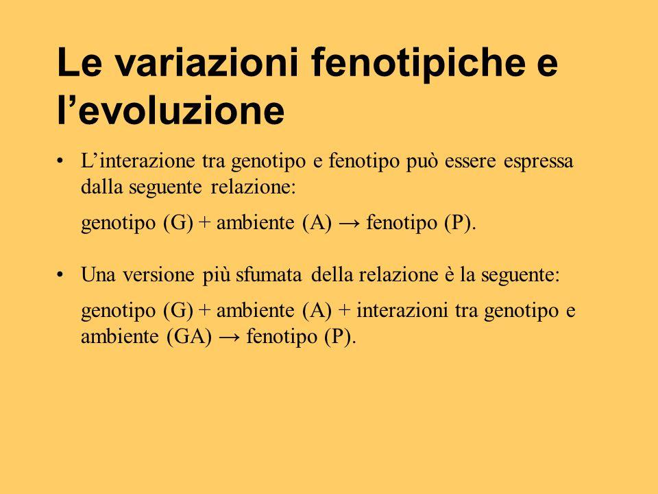 Le variazioni fenotipiche e l'evoluzione L'interazione tra genotipo e fenotipo può essere espressa dalla seguente relazione: genotipo (G) + ambiente (