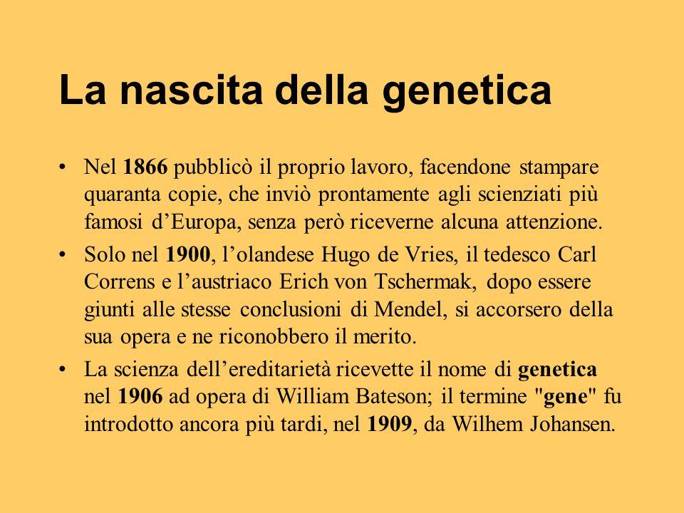 La nascita della genetica Nel 1866 pubblicò il proprio lavoro, facendone stampare quaranta copie, che inviò prontamente agli scienziati più famosi d'E