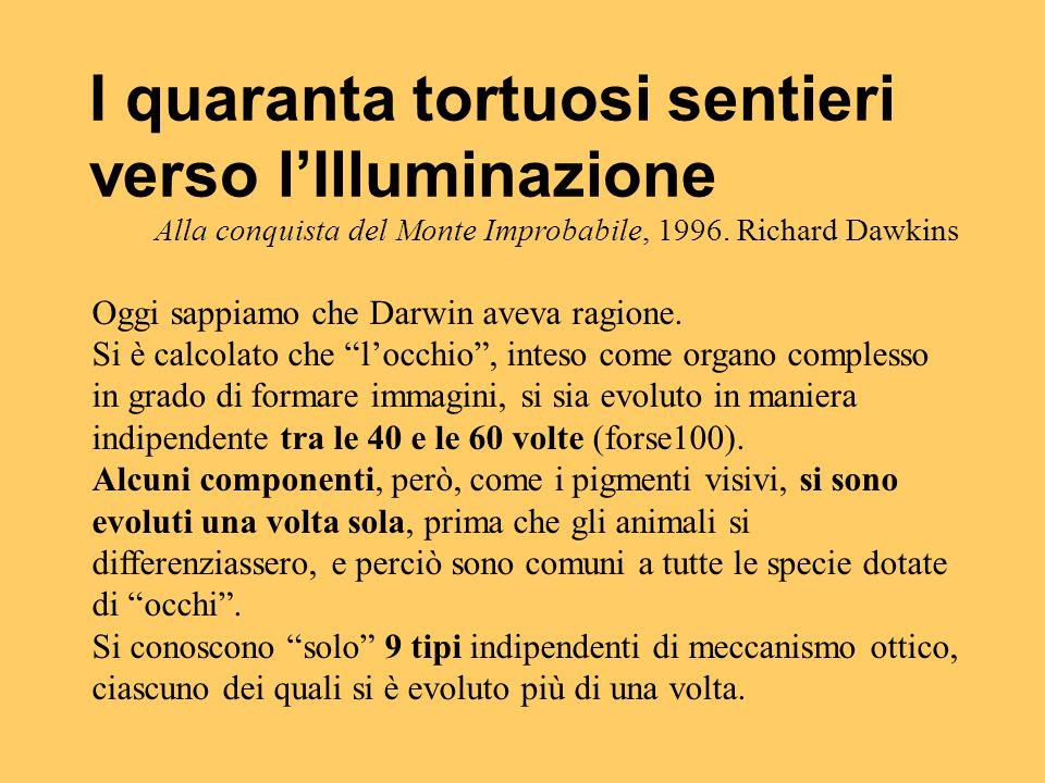 I quaranta tortuosi sentieri verso l'Illuminazione Alla conquista del Monte Improbabile, 1996. Richard Dawkins Oggi sappiamo che Darwin aveva ragione.