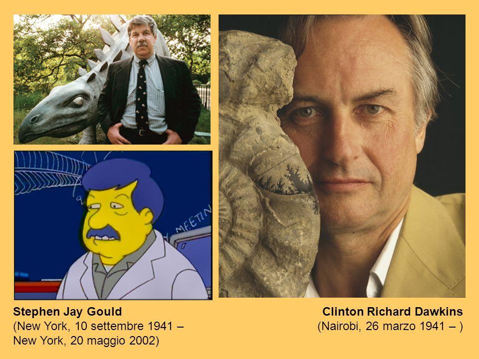 Stephen Jay Gould (New York, 10 settembre 1941 – New York, 20 maggio 2002) Clinton Richard Dawkins (Nairobi, 26 marzo 1941 – )