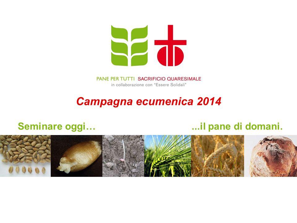 1 Campagna ecumenica 2014 Seminare oggi…...il pane di domani.
