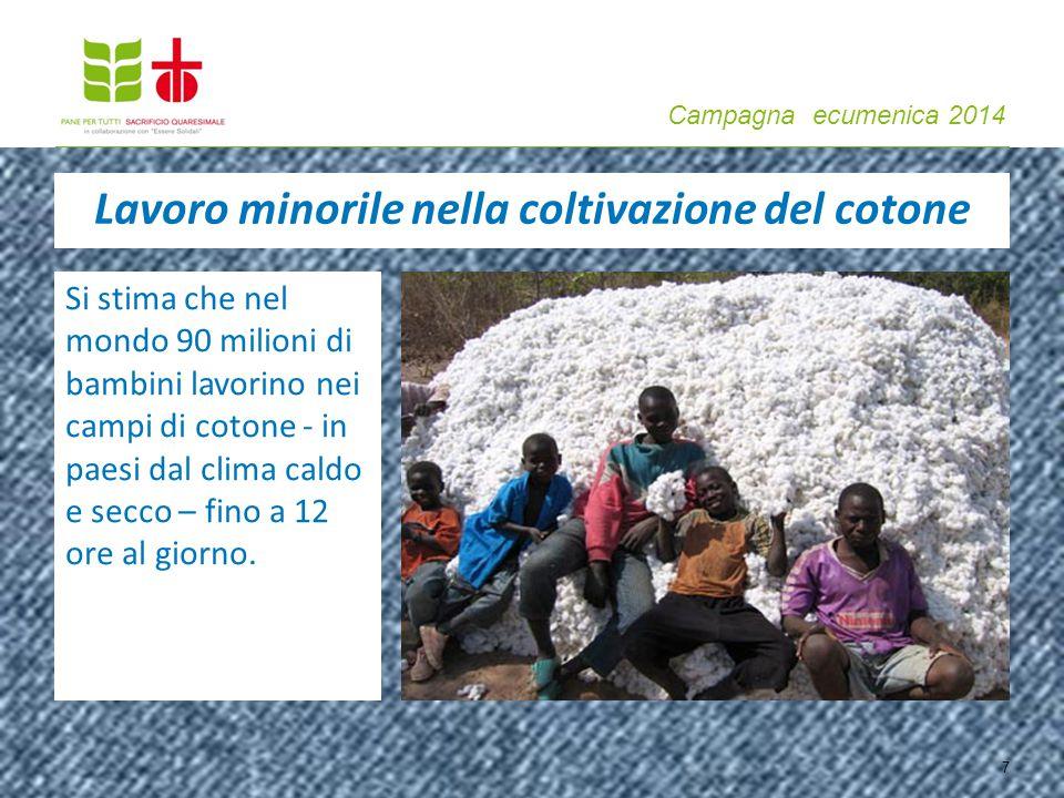 Campagna ecumenica 2014 Si stima che nel mondo 90 milioni di bambini lavorino nei campi di cotone - in paesi dal clima caldo e secco – fino a 12 ore a