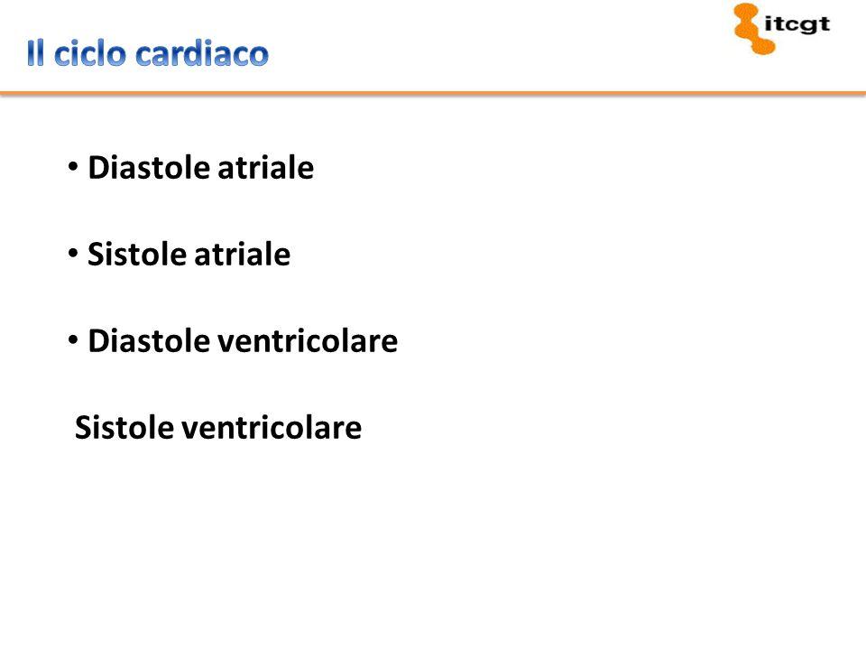 Tricuspide (tra atrio e ventricolo destri) Mitrale (tra atrio e ventricolo sinistri) Polmonare (tra ventricolo destro e arteria polmonare) Aortica (tra ventricolo sinistro e arteria aorta) È l'azione di chiusura delle valvole che determina il caratteristico rumore del battito!