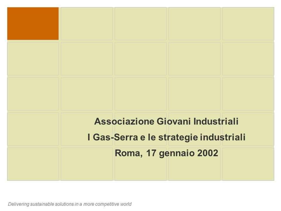 Delivering sustainable solutions in a more competitive world Associazione Giovani Industriali I Gas-Serra e le strategie industriali Roma, 17 gennaio 2002