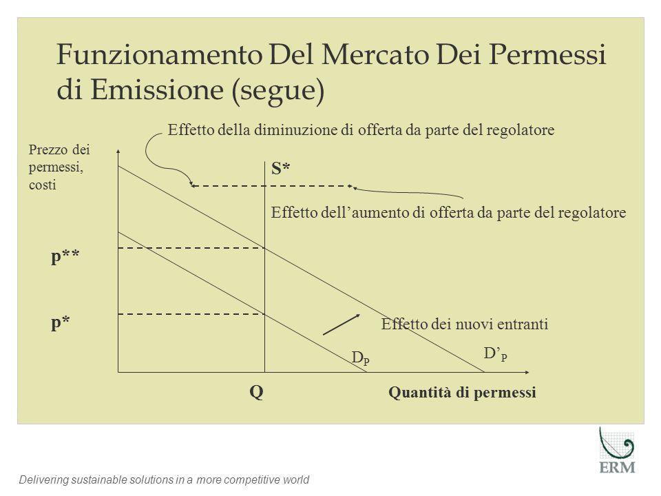 Delivering sustainable solutions in a more competitive world Q p* p** Quantità di permessi Effetto dei nuovi entranti S* Effetto della diminuzione di offerta da parte del regolatore Effetto dell'aumento di offerta da parte del regolatore Prezzo dei permessi, costi DPDP D' P Funzionamento Del Mercato Dei Permessi di Emissione (segue)