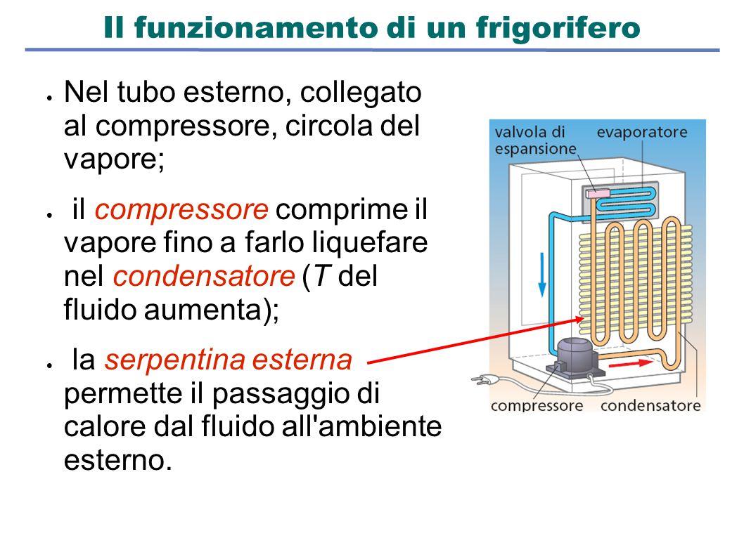 Il funzionamento di un frigorifero  Nel tubo esterno, collegato al compressore, circola del vapore;  il compressore comprime il vapore fino a farlo