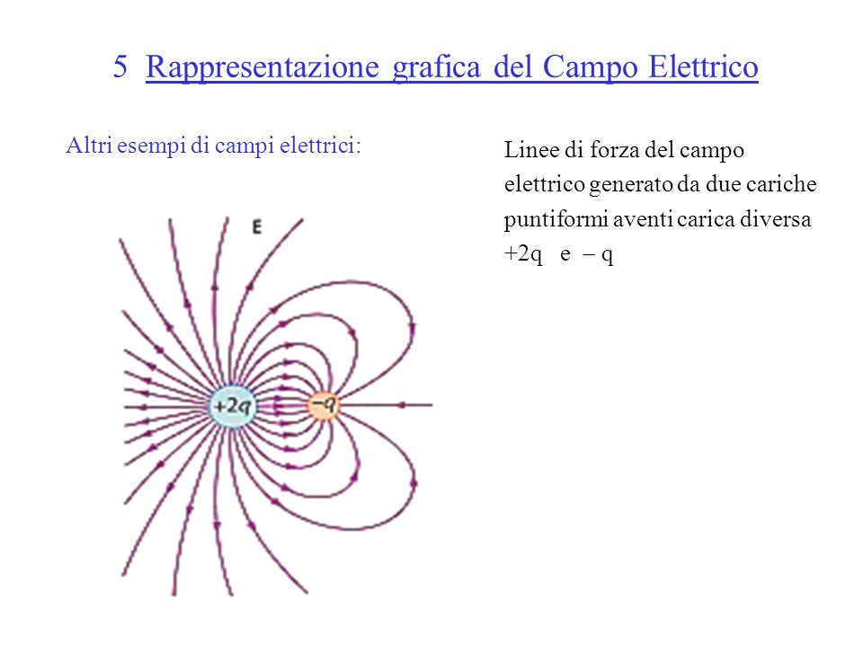 5 Rappresentazione grafica del Campo Elettrico Altri esempi di campi elettrici: Linee di forza del campo elettrico generato da due cariche puntiformi aventi carica diversa +2q e  q