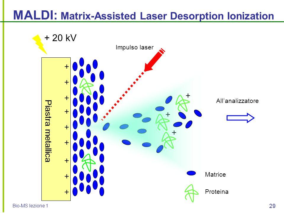 Bio-MS lezione 1 29 + + + MALDI: Matrix-Assisted Laser Desorption Ionization + + + + + + + + + Proteina Matrice Impulso laser + 20 kV All'analizzatore