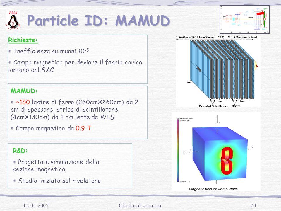 24Gianluca Lamanna12.04.2007 Particle ID: MAMUD Particle ID: MAMUDRichieste: Inefficienza su muoni 10 -5 Campo magnetico per deviare il fascio carico lontano dal SAC MAMUD: ~150 lastre di ferro (260cmX260cm) da 2 cm di spessore, strips di scintillatore (4cmX130cm) da 1 cm lette da WLS Campo magnetico da 0.9 TR&D: Progetto e simulazione della sezione magnetica Studio iniziato sul rivelatore