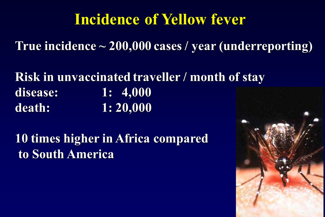 Incidence of Yellow fever True incidence ~ 200,000 cases / year (underreporting) Risk in unvaccinated traveller / month of stay disease:1: 4,000 death