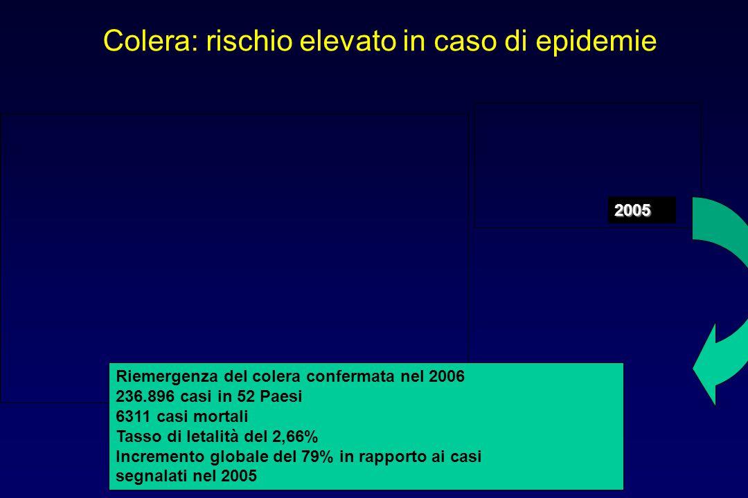 Riemergenza del colera confermata nel 2006 236.896 casi in 52 Paesi 6311 casi mortali Tasso di letalità del 2,66% Incremento globale del 79% in rappor