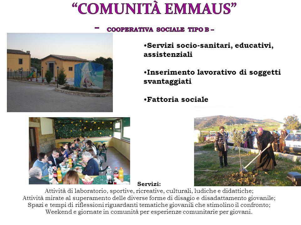 Servizi socio-sanitari, educativi, assistenziali Inserimento lavorativo di soggetti svantaggiati Fattoria sociale Servizi: Attività di laboratorio, sp