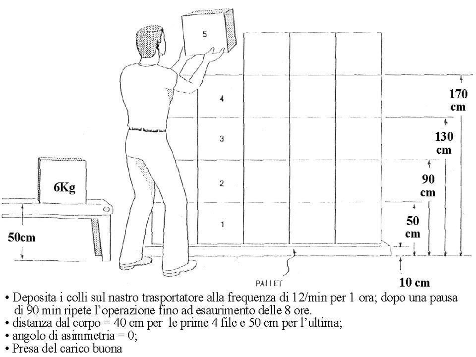 Il metodo NIOSH Sovraccarico Biomeccanico della Colonna